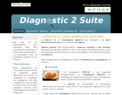www.diagnostic-merules.fr