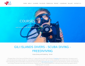 www.gili-islands-divers.com